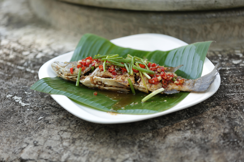 Duncan\'s tasty Thai kitchen – Michelle Pini